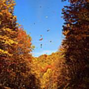Falling Fall Leaves - Blue Ridge Parkway Poster by Dan Carmichael