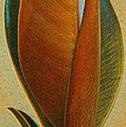 Fantasy Leaf Poster by Ben and Raisa Gertsberg