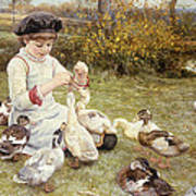 Feeding Ducks Poster by Edward Killingworth Johnson