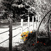 Fence Near The Garden Poster by Julie Hamilton