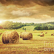 Field Of Freshly Bales Of Hay With Beautiful Sunset Poster by Sandra Cunningham