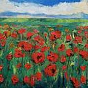 Field Of Red Poppies Poster by Michael Creese