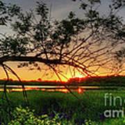 Fiery Swamp Sunset Poster by Deborah Smolinske