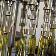 Filling Wine Bottles Poster by Kevin Miller