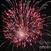 Fireworks For All Poster by Terry Weaver