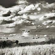 Flint Hills Prairie Poster by Thomas Bomstad