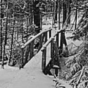 Foot Bridge In Winter Poster by David Rucker
