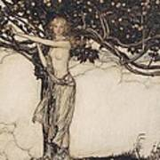 Freia The Fair One Illustration From The Rhinegold And The Valkyrie Poster by Arthur Rackham