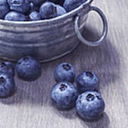 Fresh Picked Blueberries With Vintage Feel Poster by Edward Fielding