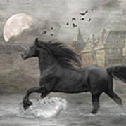 Friesian Fantasy Poster by Fran J Scott
