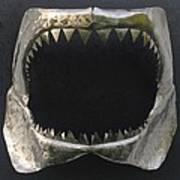 Gaint Shark Jaw Sculpture Poster by Stuart Peterman