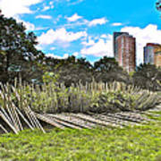 Garden With Bamboo Garden Fence In Battery Park In New York City-ny Poster by Ruth Hager