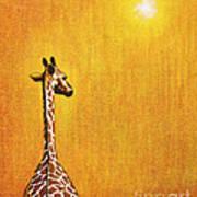 Giraffe Looking Back Poster by Jerome Stumphauzer