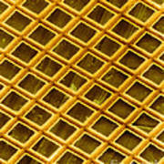 Gold Electron Micrograph Grid Poster by David M. Phillips