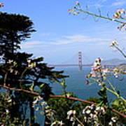 Golden Gate Bridge And Wildflowers Poster by Carol Groenen