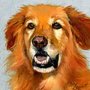Golden Retriever Dog Poster by Alice Leggett