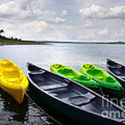 Green And Yellow Kayaks Poster by Carlos Caetano