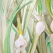 Green Onions Poster by Debi Starr