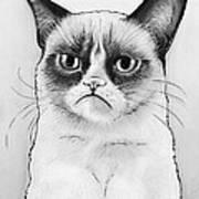 Grumpy Cat Portrait Poster by Olga Shvartsur