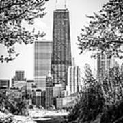 Hancock Building Through Trees Black And White Photo Poster by Paul Velgos