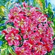 Hawthorn Blossom Poster by Zaira Dzhaubaeva