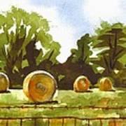 Hay Bales At Noontime  Poster by Kip DeVore