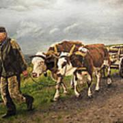 Heading Home Poster by Deborah Strategier