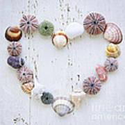 Heart Of Seashells And Rocks Poster by Elena Elisseeva