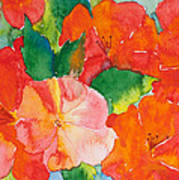 Hibiscus Flowers Poster by Michelle Wiarda
