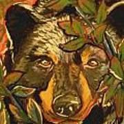 Hiding Bear Poster by Jenn Cunningham