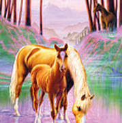 Horse And Foal Poster by Andrew Farley