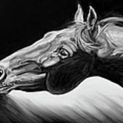 Horse Head Black And White Study Poster by Renee Forth-Fukumoto