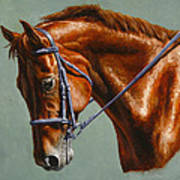 Horse Painting - Focus Poster by Crista Forest