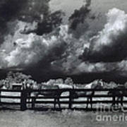 Horses Black And White Infrared Stormy Sky Nature Landscape Poster by Kathy Fornal