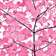 Hot Pink Leaves Melody Poster by Jennie Marie Schell