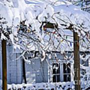 House Under Snow Poster by Elena Elisseeva