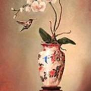 Hummingbird And White Orchid Poster by Lori  McNee