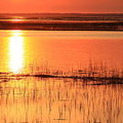 Hunting Island Tidal Marsh Poster by Michael Weeks