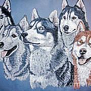 Huskies By J. Belter Garfunkel Poster by Sheldon Kralstein