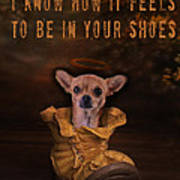 I Know How It Feels To Be In Your Shoes Poster by Kathy Tarochione