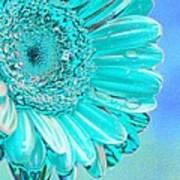Ice Blue Poster by Carol Lynch