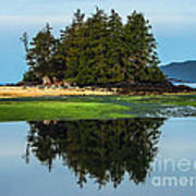 Island Reflection Poster by Robert Bales