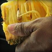 Jamaican Jack Fruit Poster by Karen Wiles