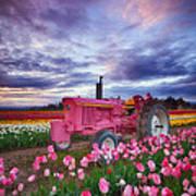 John Deere Pink Poster by Darren  White