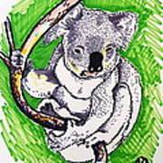 Koala Poster by Andrea Keating
