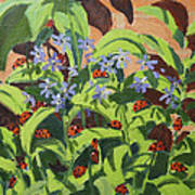 Ladybirds Poster by Andrew Macara