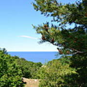 Lake Michigan From The Top Of The Dune Poster by Michelle Calkins