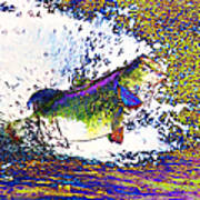 Largemouth Bass P68 Poster by Wingsdomain Art and Photography