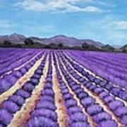 Lavender Field In Provence Poster by Anastasiya Malakhova