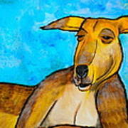 Lazy Roo Poster by Debi Starr